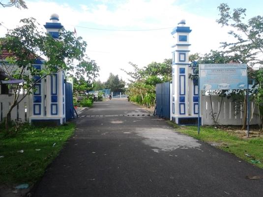 Selamat datang di Konservasi Penyu Kabupaten Pariaman :D