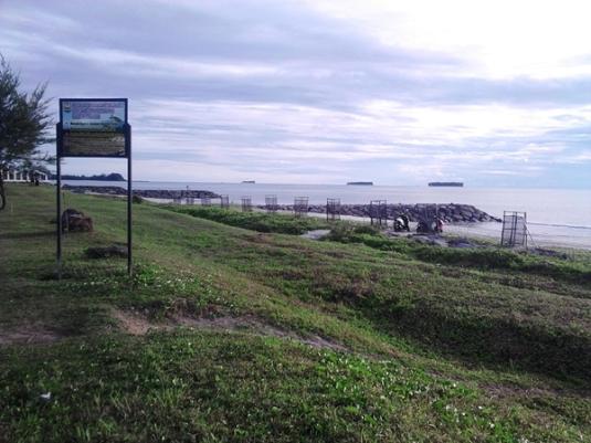 konservasi penyu pantai pariaman sumbar (9)